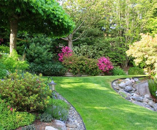 Daniel Bunting - Garden Contractors - Gardening