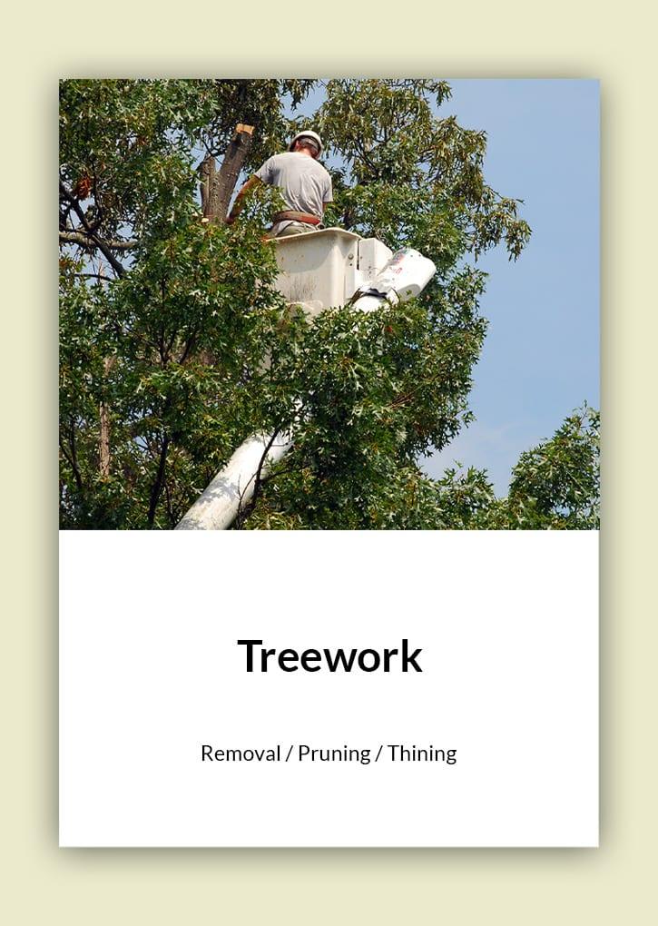 Daniel Bunting - Garden Contractors - Treework